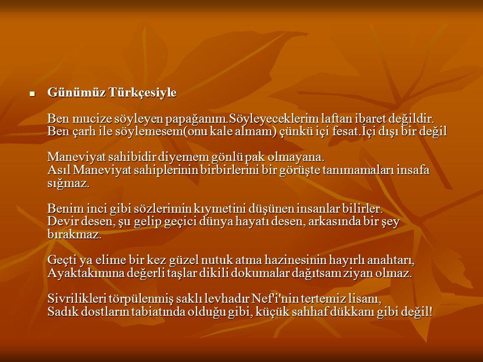 Günümüz Türkçesiyle Ben mucize söyleyen papağanım
