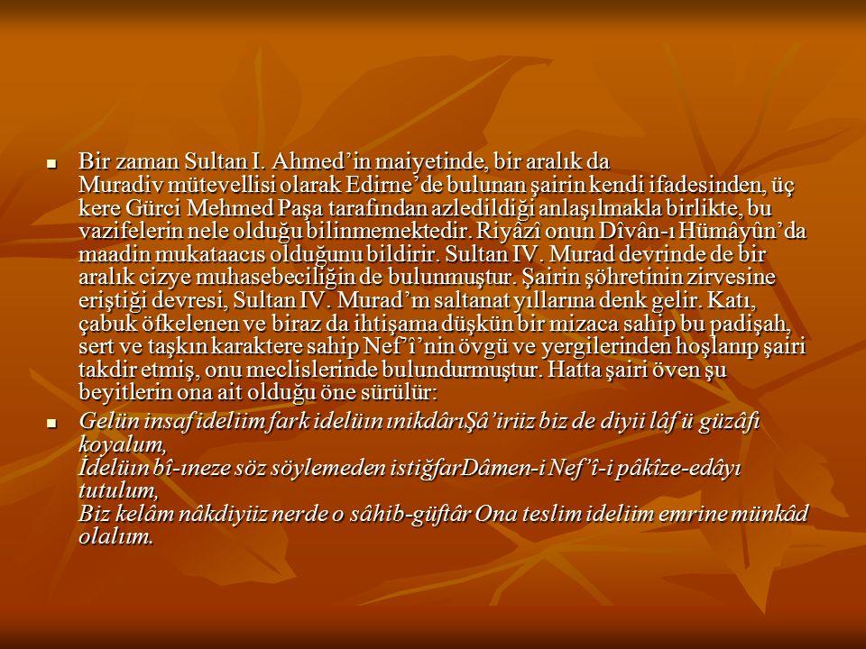 Bir zaman Sultan I. Ahmed'in maiyetinde, bir aralık da Muradiv mütevellisi olarak Edirne'de bulunan şairin kendi ifadesinden, üç kere Gürci Mehmed Paşa tarafından azledildiği anlaşılmakla birlikte, bu vazifelerin nele olduğu bilinmemektedir. Riyâzî onun Dîvân-ı Hümâyûn'da maadin mukataacıs olduğunu bildirir. Sultan IV. Murad devrinde de bir aralık cizye muhasebeciliğin de bulunmuştur. Şairin şöhretinin zirvesine eriştiği devresi, Sultan IV. Murad'm saltanat yıllarına denk gelir. Katı, çabuk öfkelenen ve biraz da ihtişama düşkün bir mizaca sahip bu padişah, sert ve taşkın karaktere sahip Nef'î'nin övgü ve yergilerinden hoşlanıp şairi takdir etmiş, onu meclislerinde bulundurmuştur. Hatta şairi öven şu beyitlerin ona ait olduğu öne sürülür: