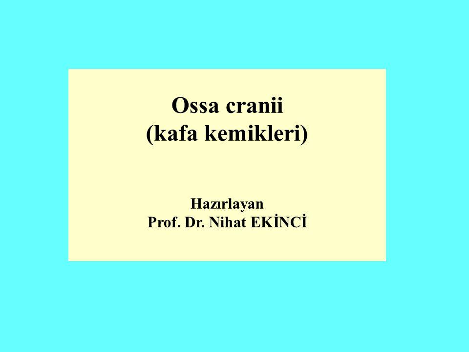 Ossa cranii (kafa kemikleri) Hazırlayan Prof. Dr. Nihat EKİNCİ
