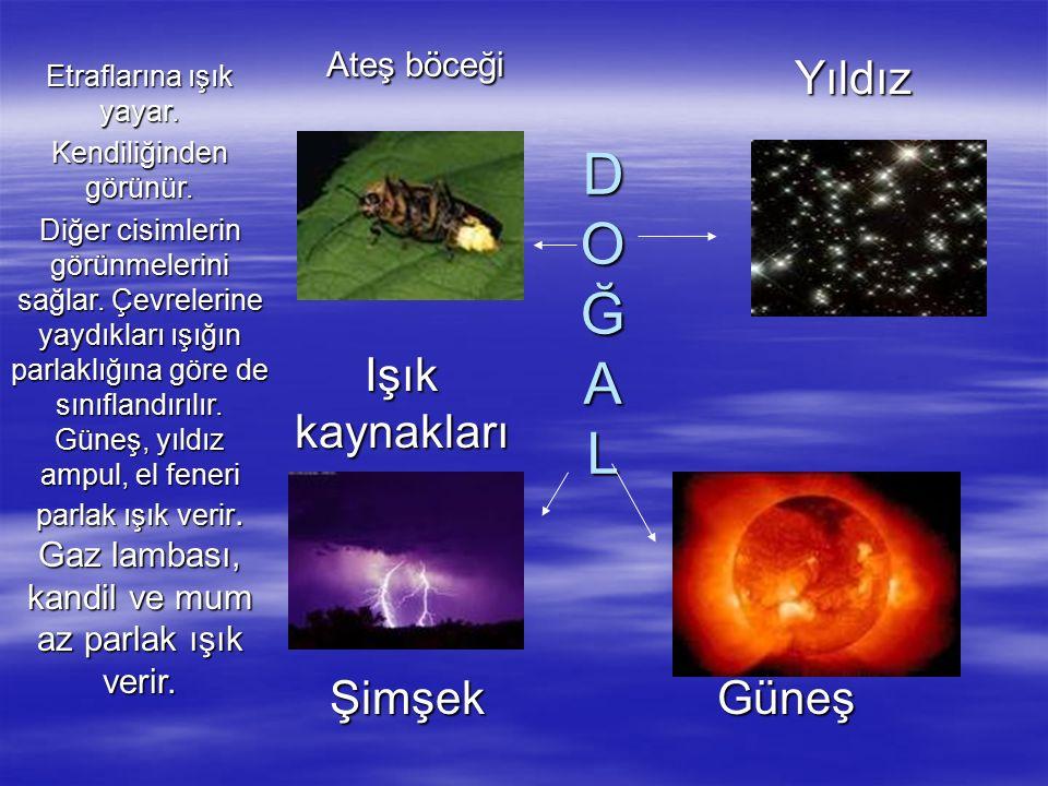 D O Ğ A L Ateş böceği Yıldız Işık kaynakları Şimşek Güneş