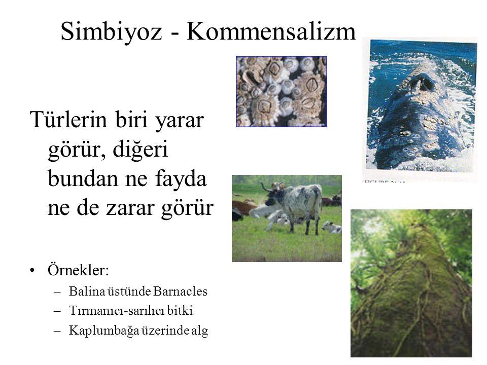 Simbiyoz - Kommensalizm