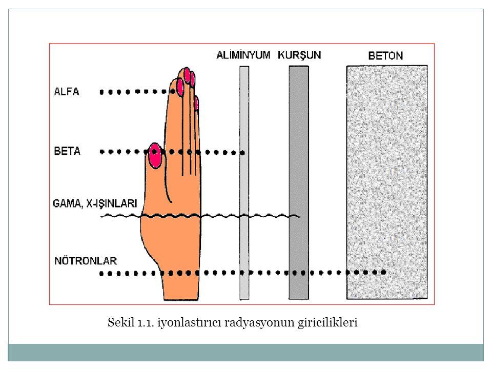 Sekil 1.1. iyonlastırıcı radyasyonun giricilikleri