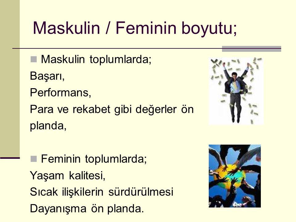 Maskulin / Feminin boyutu;