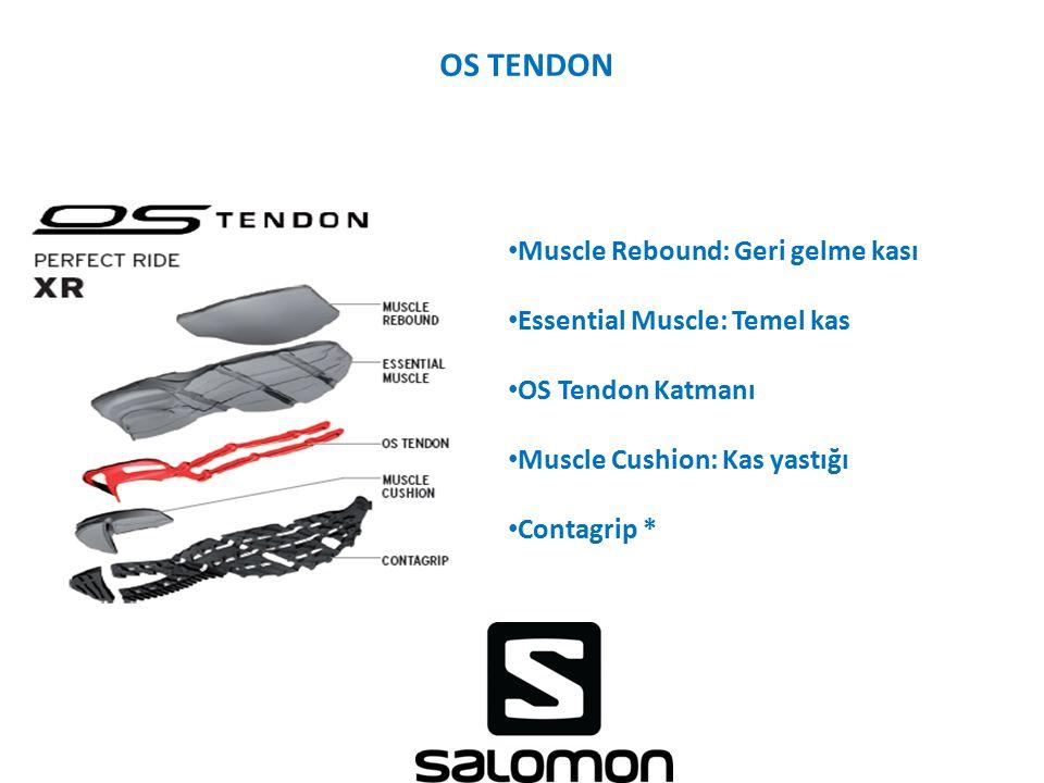 OS TENDON Muscle Rebound: Geri gelme kası Essential Muscle: Temel kas