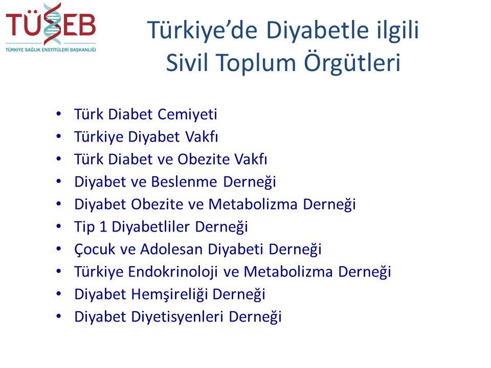 Türkiye'de Diyabetle ilgili Sivil Toplum Örgütleri