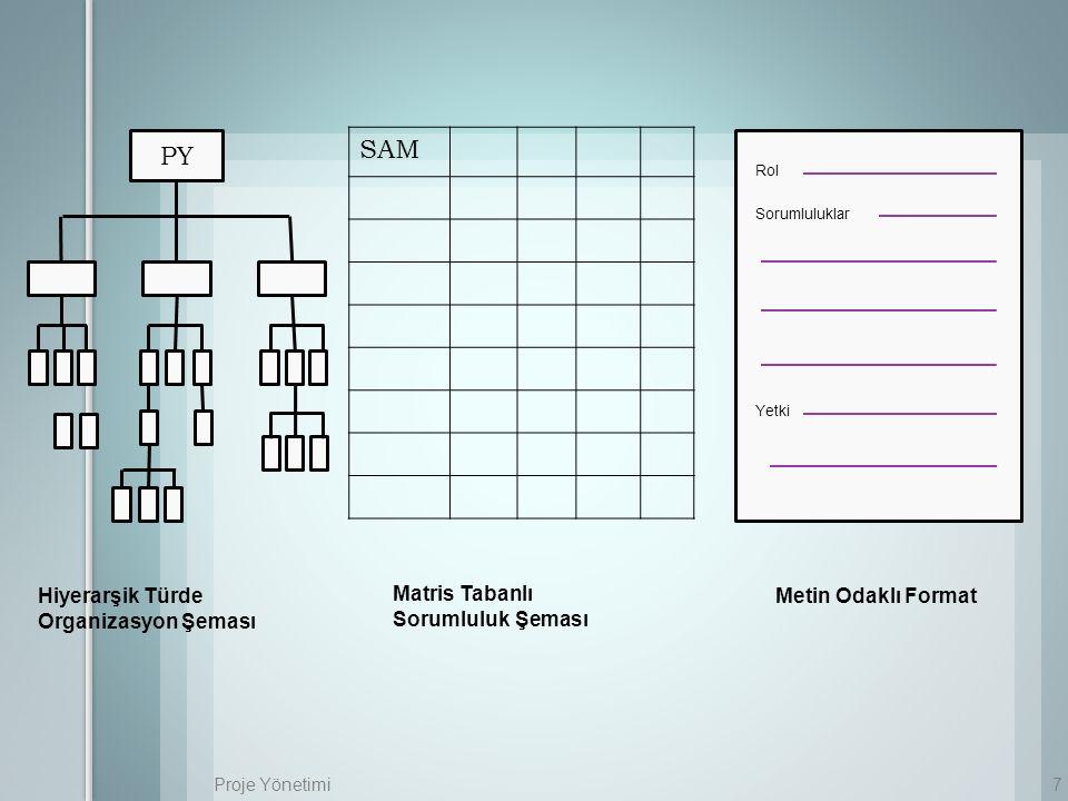 SAM PY Hiyerarşik Türde Organizasyon Şeması