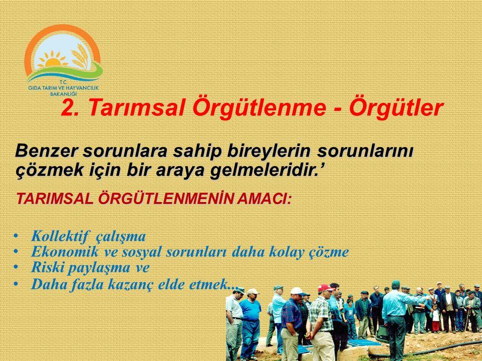 2. Tarımsal Örgütlenme - Örgütler