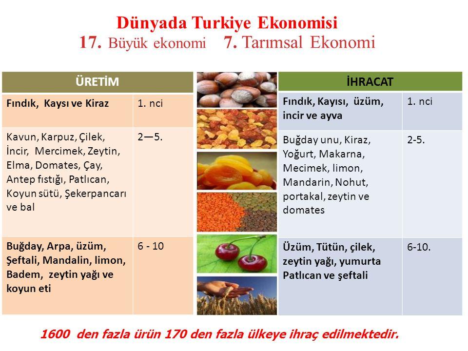 Dünyada Turkiye Ekonomisi 17. Büyük ekonomi 7. Tarımsal Ekonomi