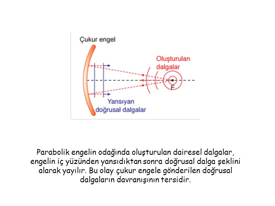 Parabolik engelin odağında oluşturulan dairesel dalgalar, engelin iç yüzünden yansıdıktan sonra doğrusal dalga şeklini alarak yayılır.