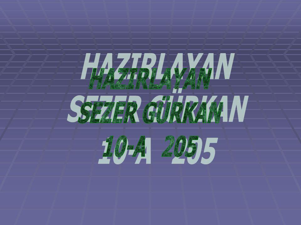 HAZIRLAYAN SEZER GÜRKAN 10-A 205