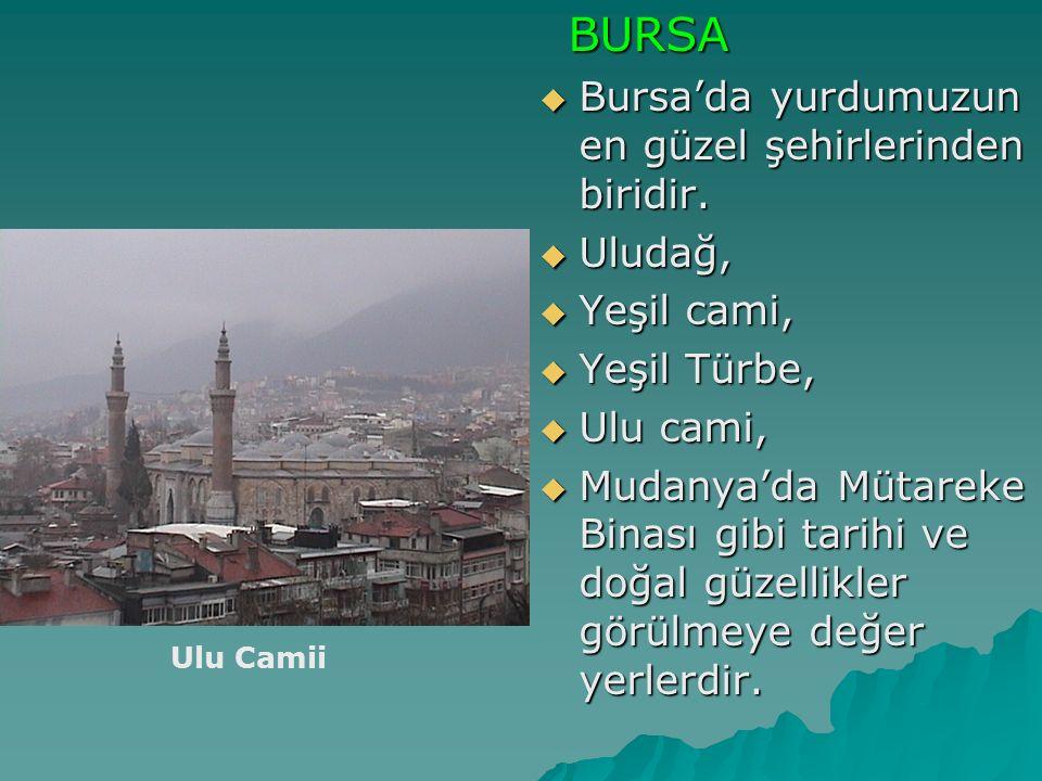 Bursa'da yurdumuzun en güzel şehirlerinden biridir.