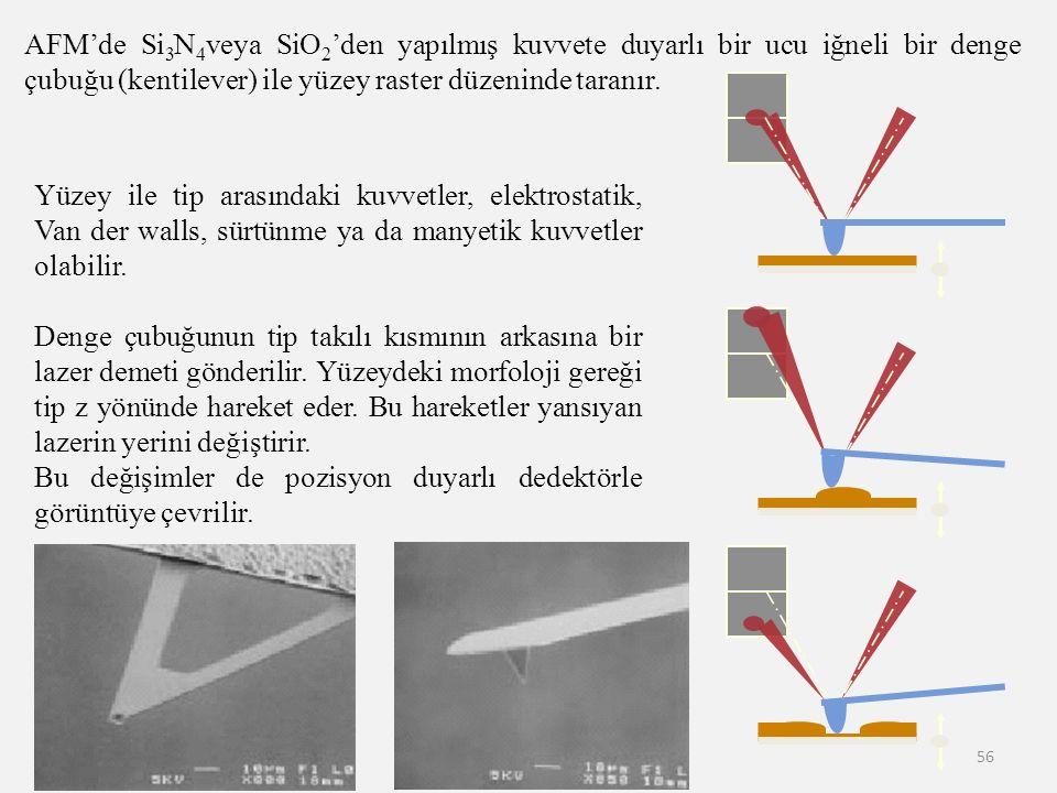 AFM'de Si3N4veya SiO2'den yapılmış kuvvete duyarlı bir ucu iğneli bir denge çubuğu (kentilever) ile yüzey raster düzeninde taranır.