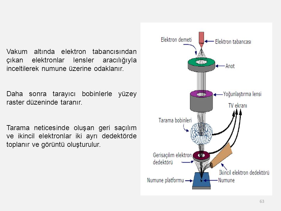 Vakum altında elektron tabancısından çıkan elektronlar lensler aracılığıyla inceltilerek numune üzerine odaklanır.