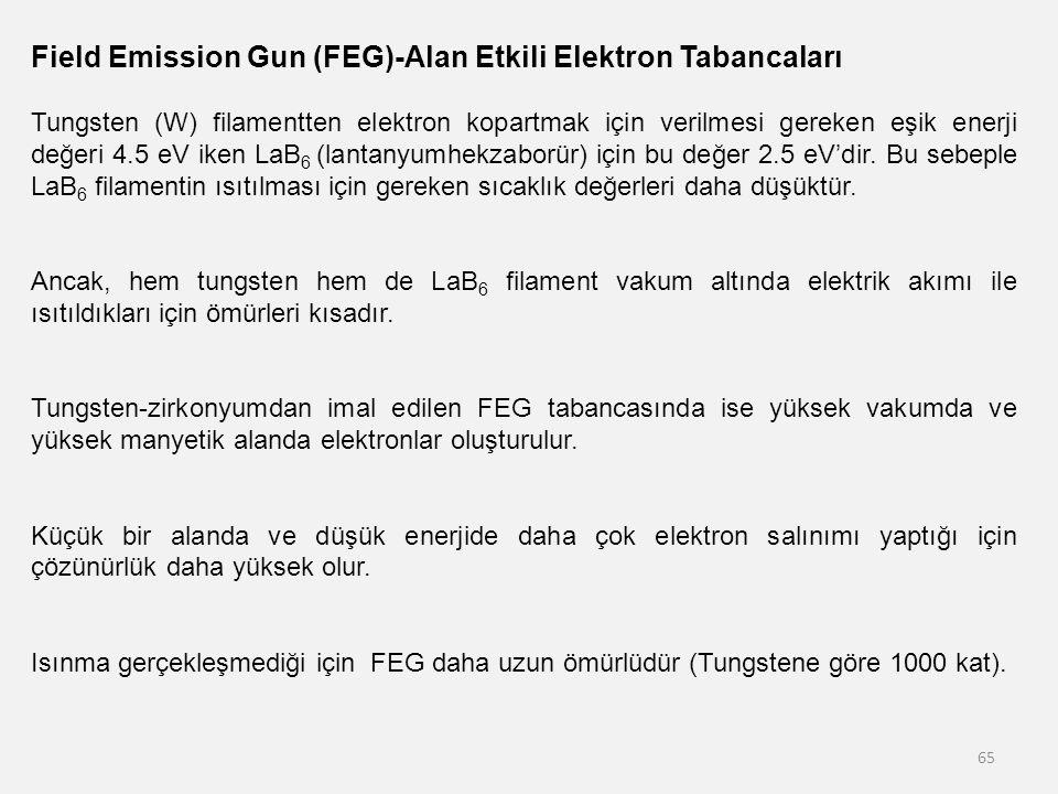 Field Emission Gun (FEG)-Alan Etkili Elektron Tabancaları