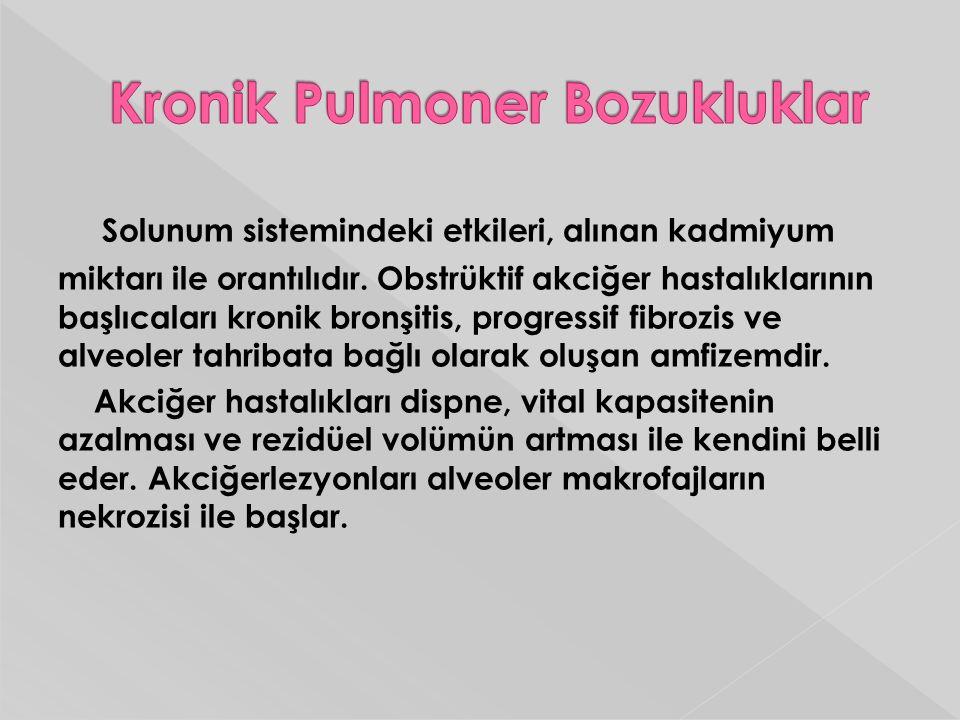 Kronik Pulmoner Bozukluklar
