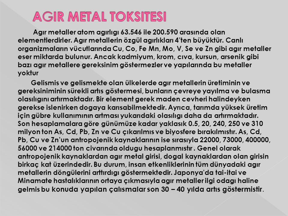 AGIR METAL TOKSITESI