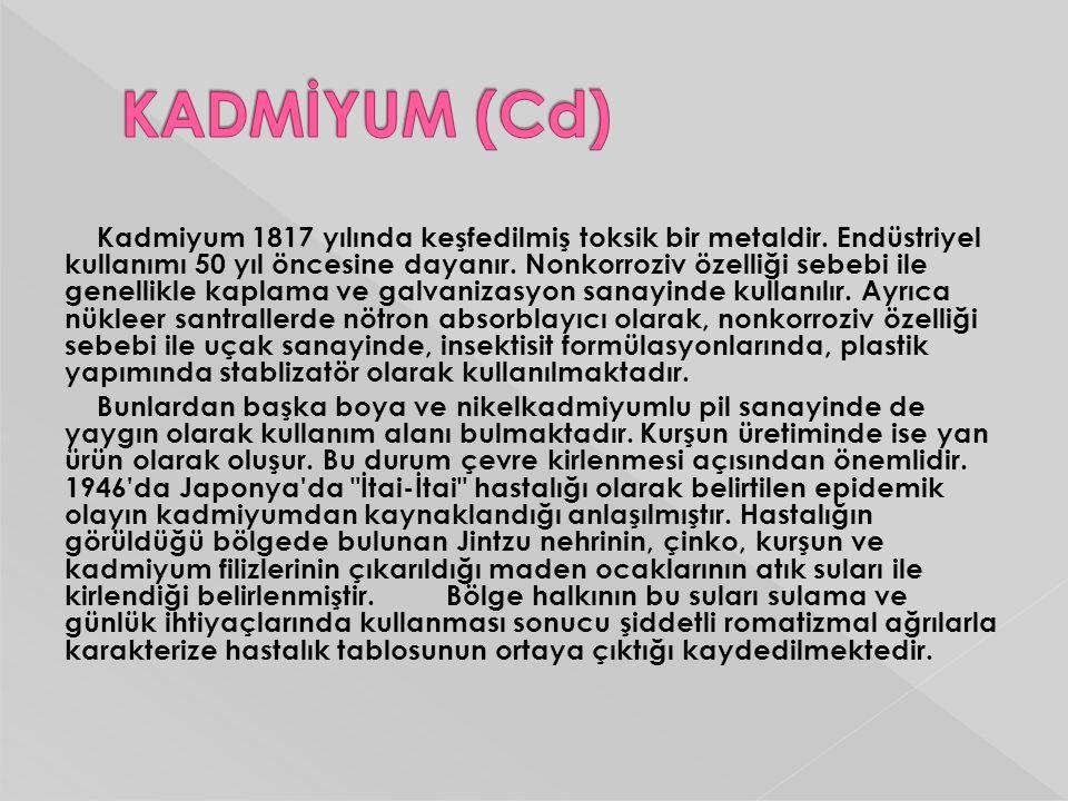 KADMİYUM (Cd)