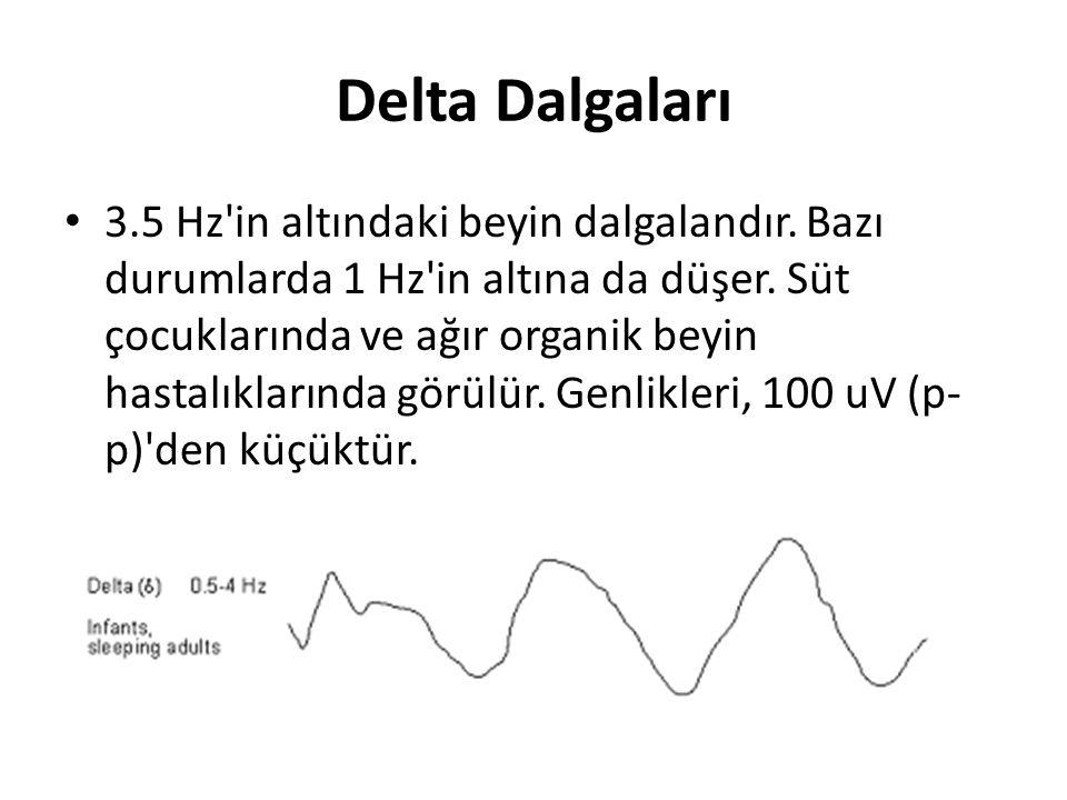 Delta Dalgaları