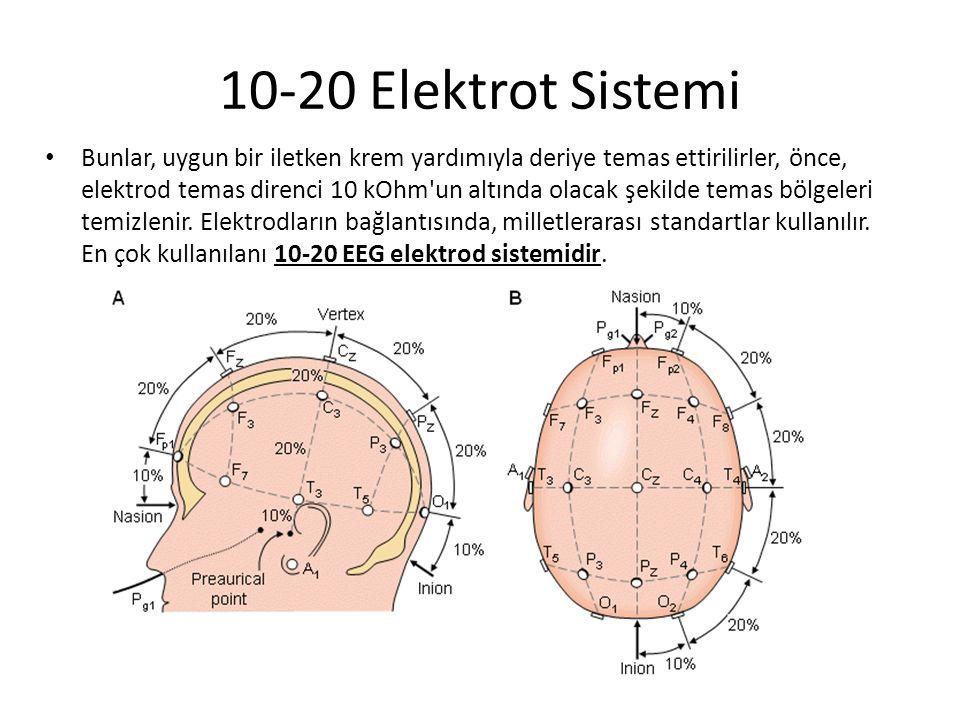 10-20 Elektrot Sistemi