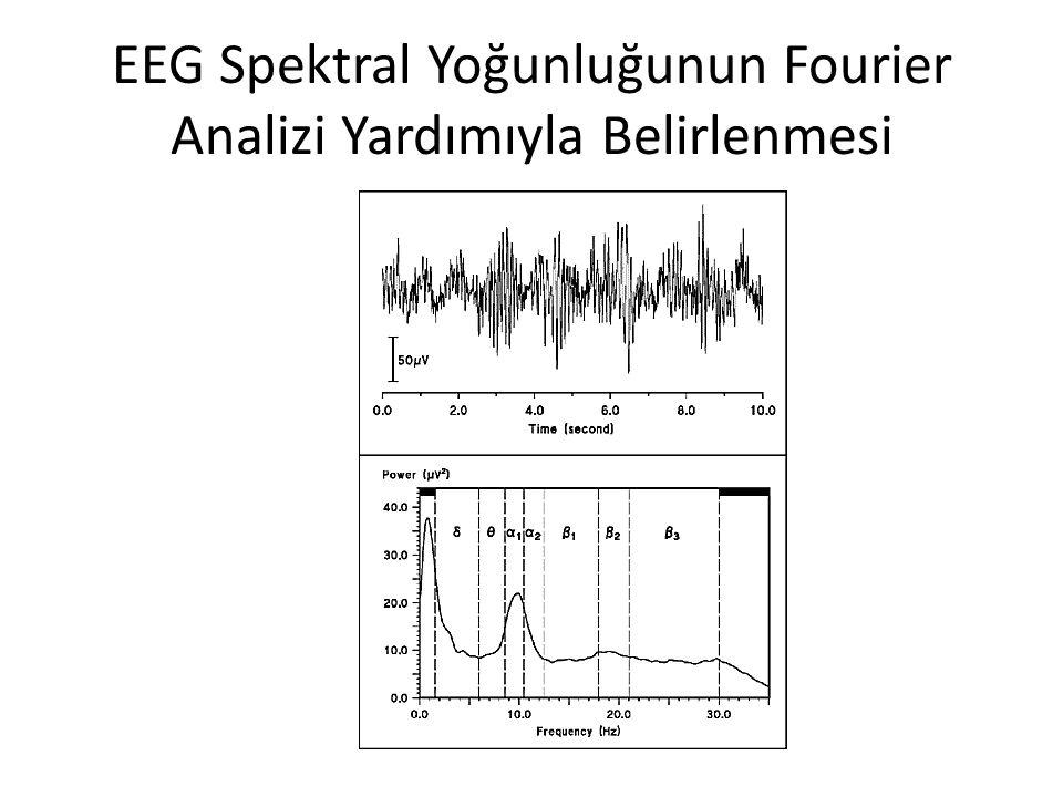 EEG Spektral Yoğunluğunun Fourier Analizi Yardımıyla Belirlenmesi