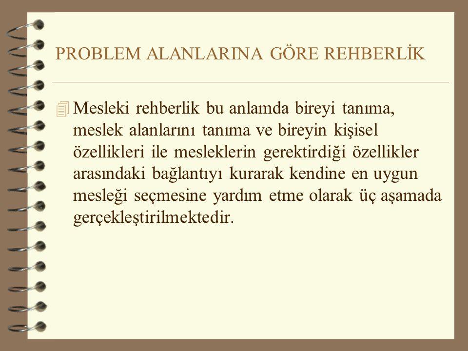 PROBLEM ALANLARINA GÖRE REHBERLİK