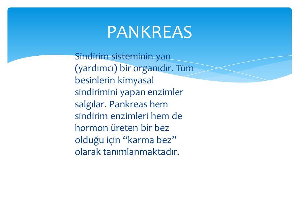 PANKREAS
