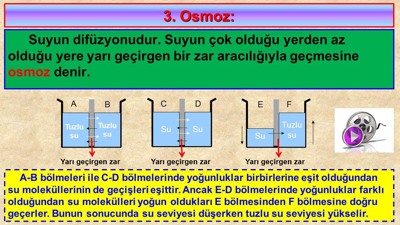 3. Osmoz: Suyun difüzyonudur. Suyun çok olduğu yerden az olduğu yere yarı geçirgen bir zar aracılığıyla geçmesine osmoz denir.