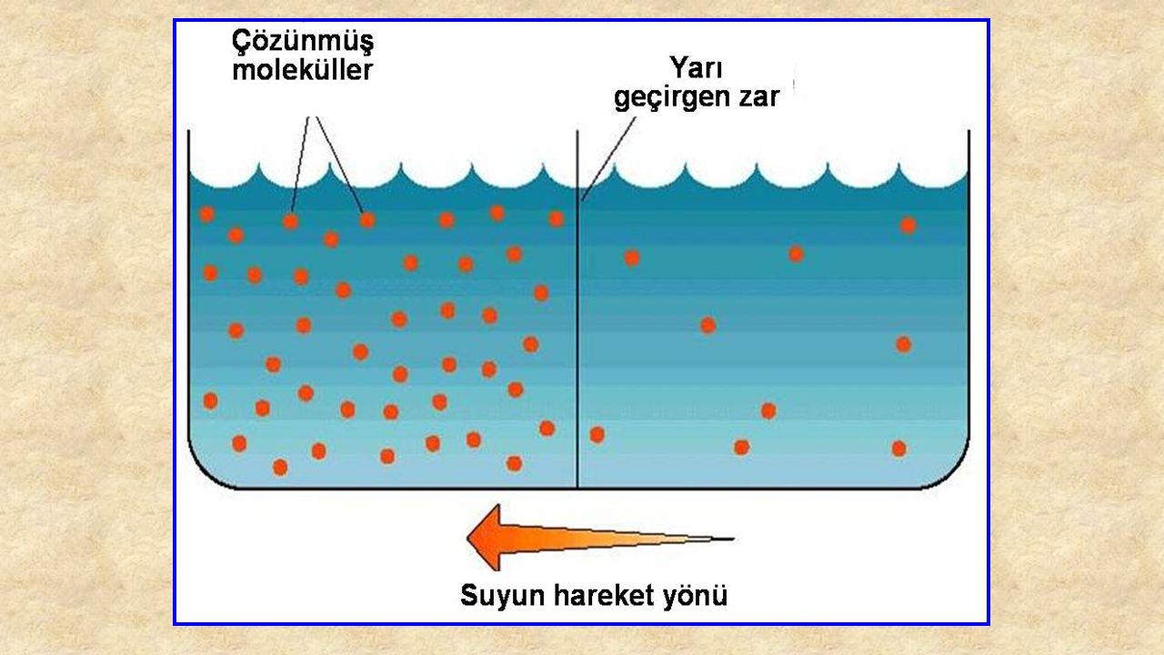 Osmatik Basınç resmi