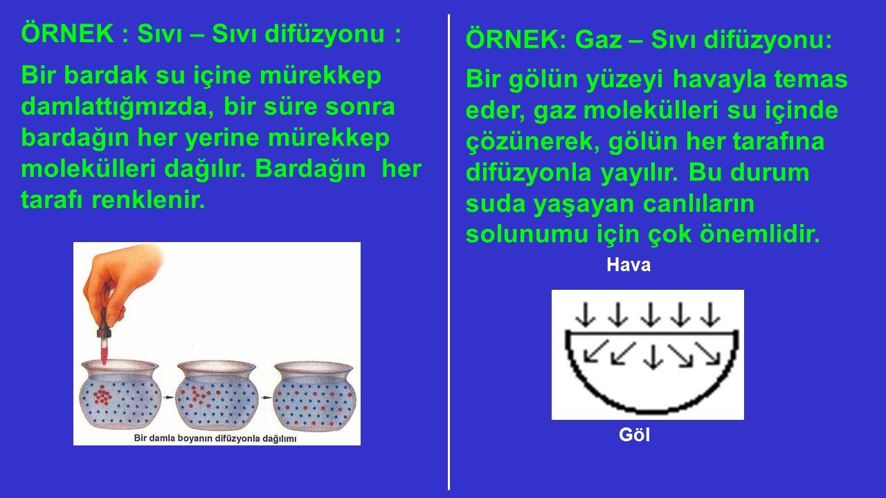 ÖRNEK : Sıvı – Sıvı difüzyonu : ÖRNEK: Gaz – Sıvı difüzyonu: