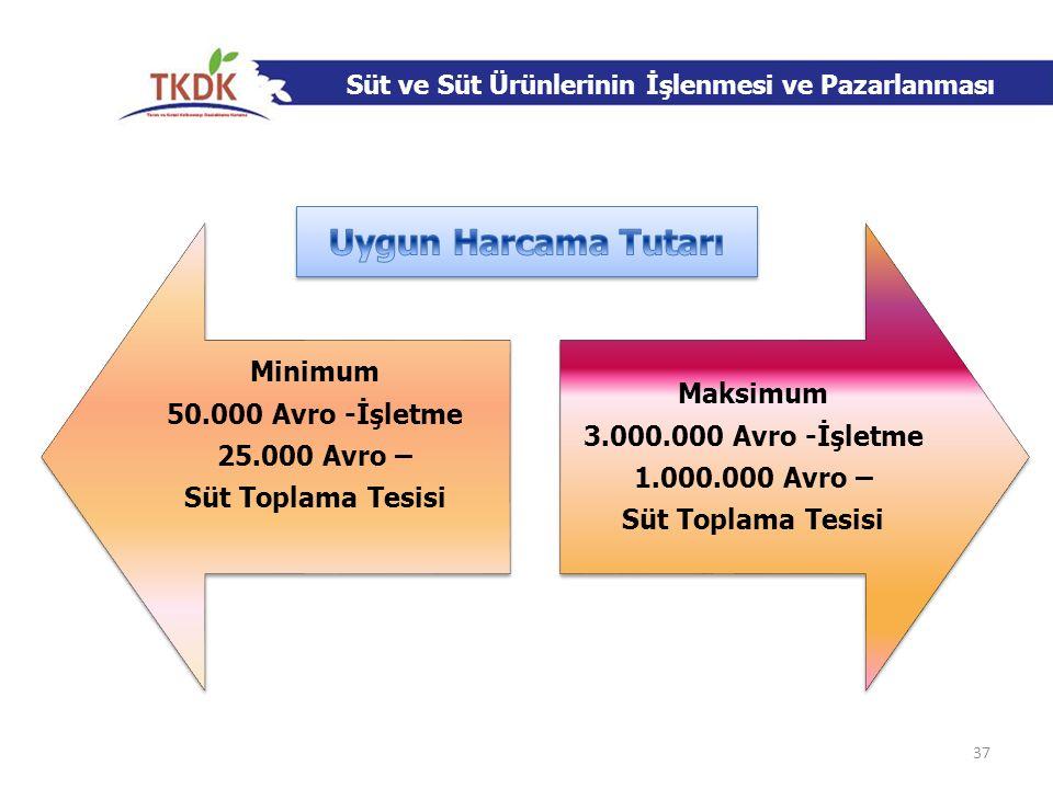 Uygun Harcama Tutarı Minimum Maksimum 50.000 Avro -İşletme