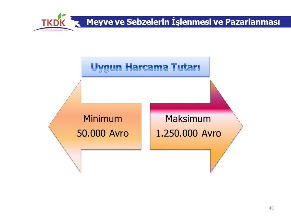 Uygun Harcama Tutarı Minimum 50.000 Avro Maksimum 1.250.000 Avro