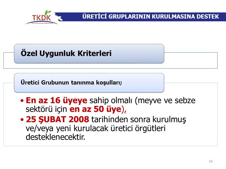 ÜRETİCİ GRUPLARININ KURULMASINA DESTEK