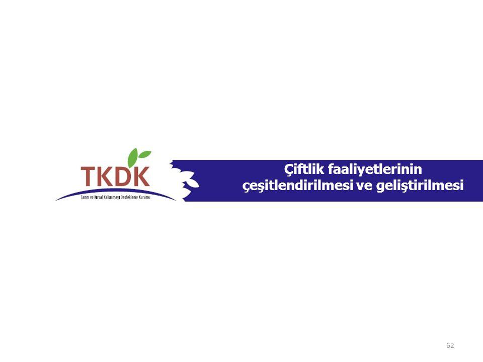 Çiftlik faaliyetlerinin çeşitlendirilmesi ve geliştirilmesi