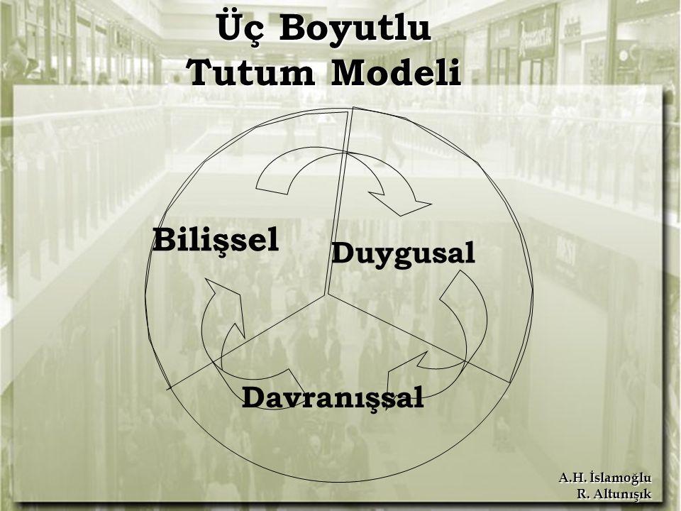 Üç Boyutlu Tutum Modeli