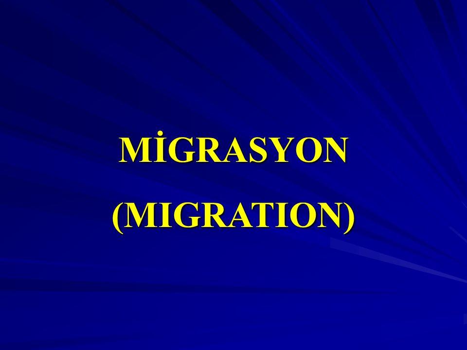 MİGRASYON (MIGRATION)