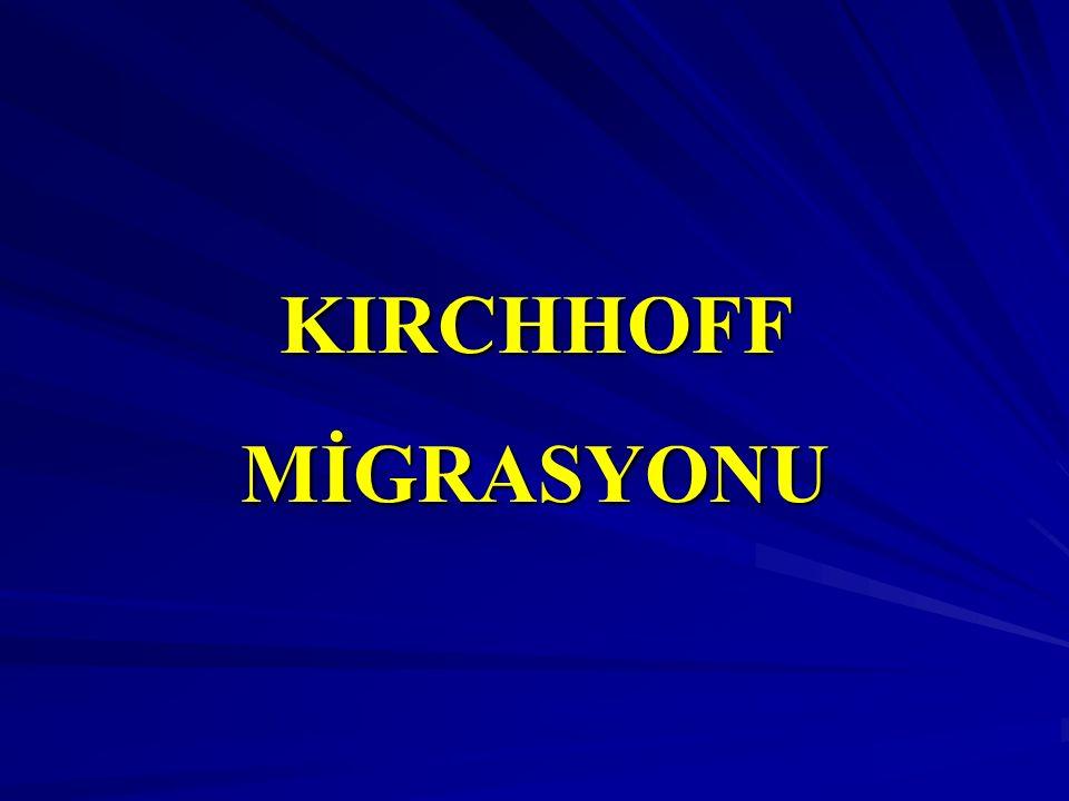KIRCHHOFF MİGRASYONU