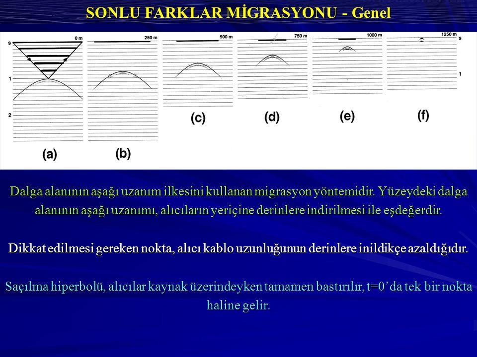 SONLU FARKLAR MİGRASYONU - Genel