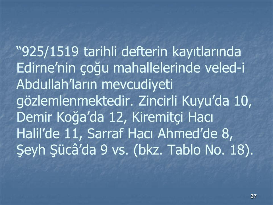 925/1519 tarihli defterin kayıtlarında Edirne'nin çoğu mahallelerinde veled-i Abdullah'ların mevcudiyeti gözlemlenmektedir.