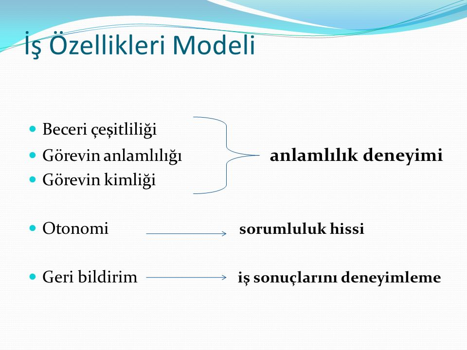 İş Özellikleri Modeli Beceri çeşitliliği