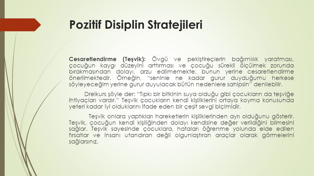 Pozitif Disiplin Stratejileri
