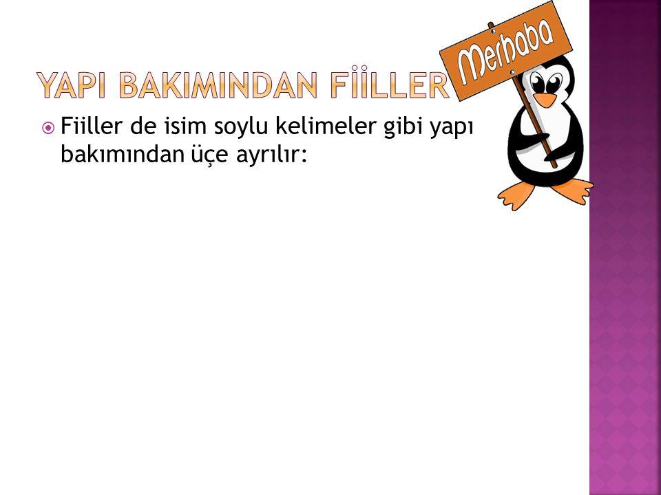 YAPI BAKIMINDAN FİİLLER