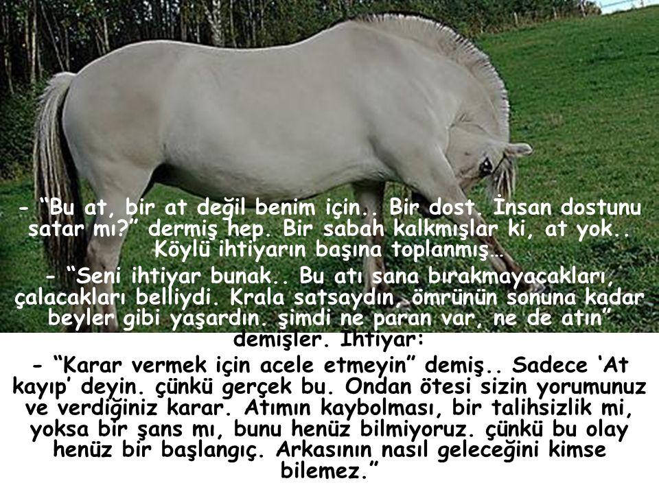 - Bu at, bir at değil benim için. Bir dost. İnsan dostunu satar mı