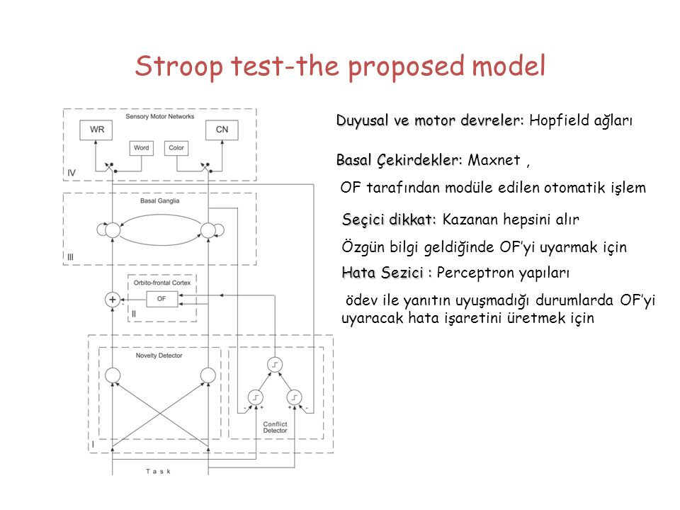 Stroop test-the proposed model