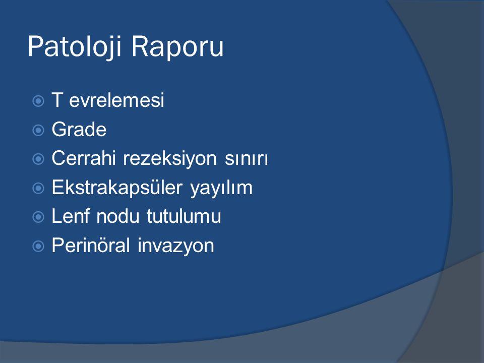 Patoloji Raporu T evrelemesi Grade Cerrahi rezeksiyon sınırı