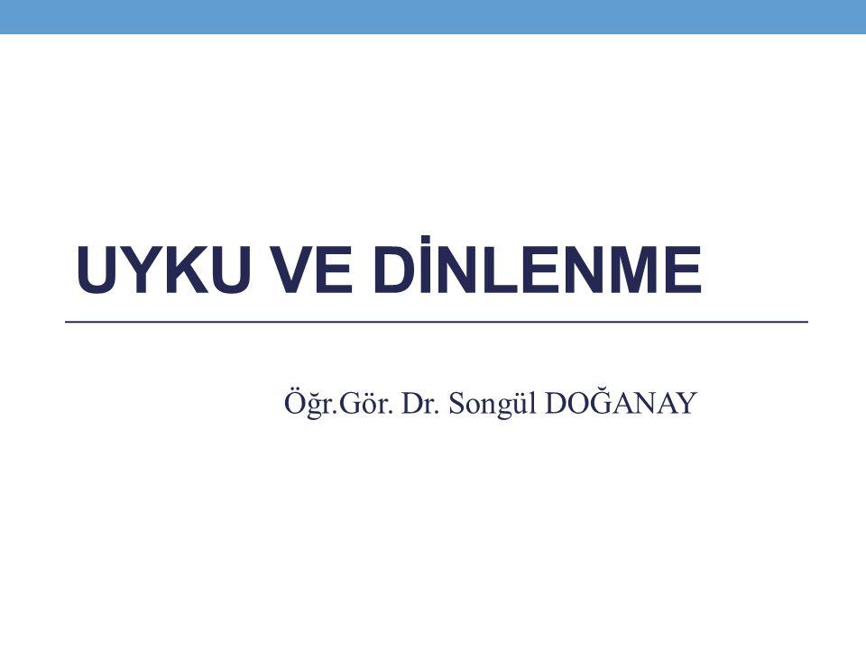 Öğr.Gör. Dr. Songül DOĞANAY