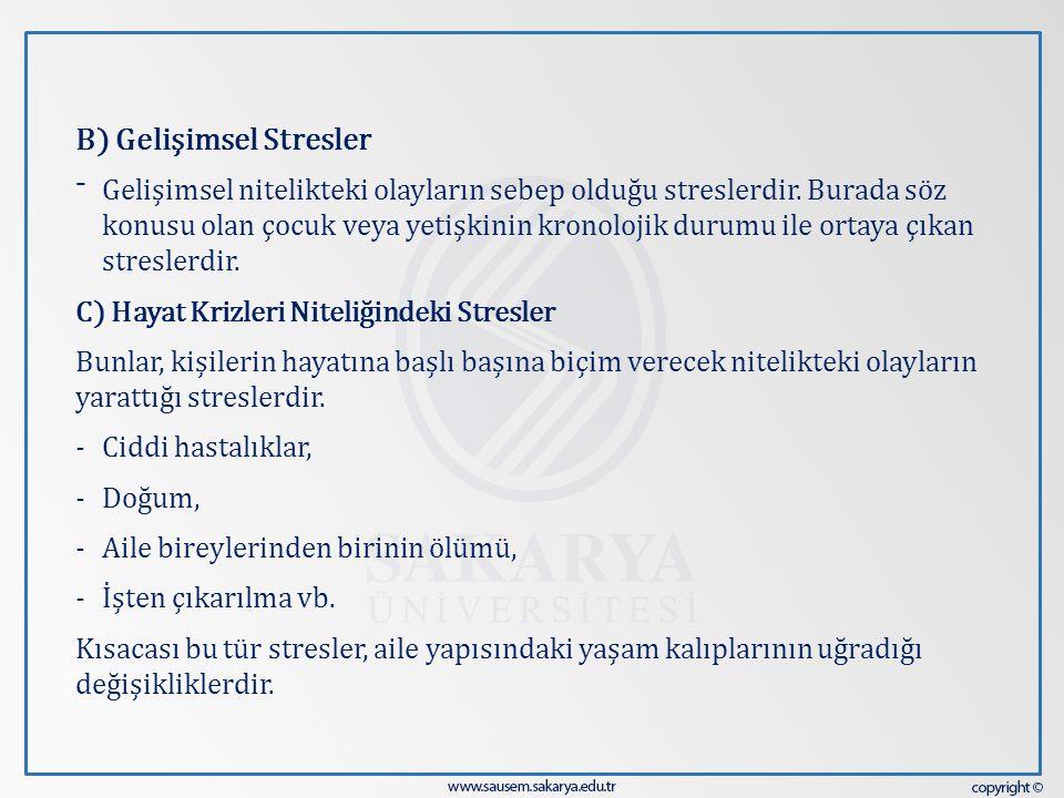 B) Gelişimsel Stresler