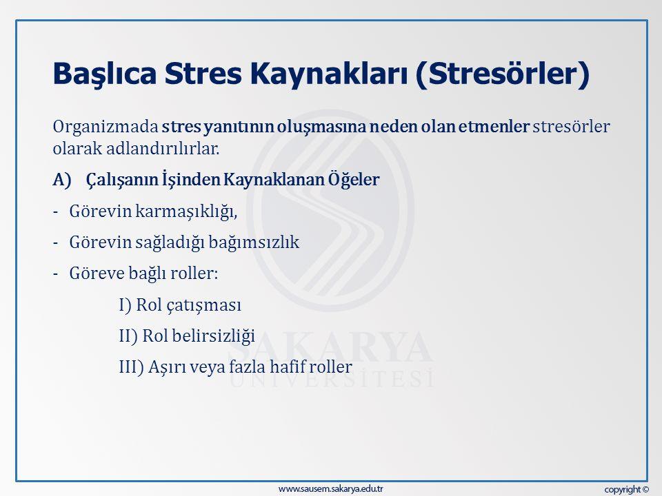 Başlıca Stres Kaynakları (Stresörler)