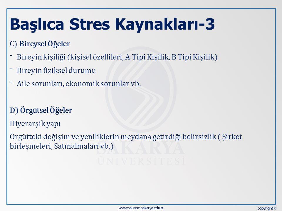Başlıca Stres Kaynakları-3