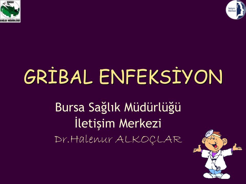Bursa Sağlık Müdürlüğü İletişim Merkezi Dr.Halenur ALKOÇLAR