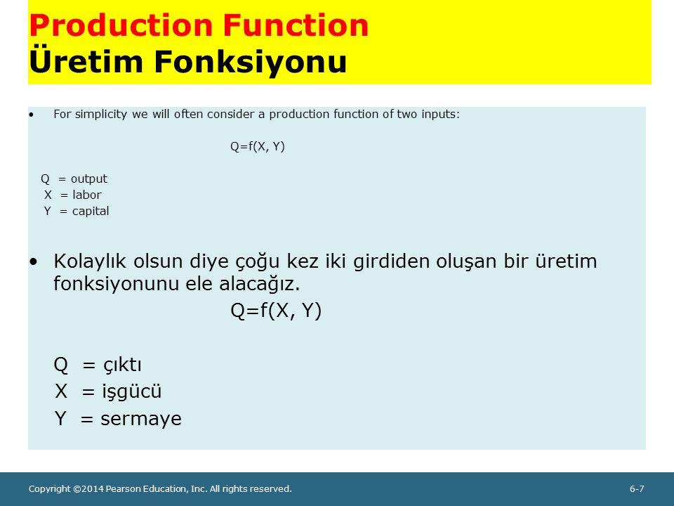 Production Function Üretim Fonksiyonu